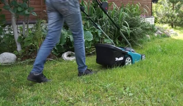 Франківчанка косила траву і загинула страшною смертю