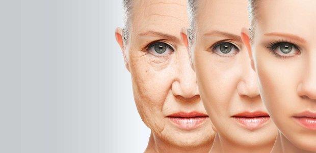 """Ученые: старость можно """"вылечить"""""""