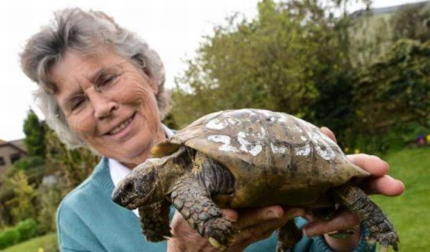 Столітня черепаха повернулася до власниці через 11 місяців
