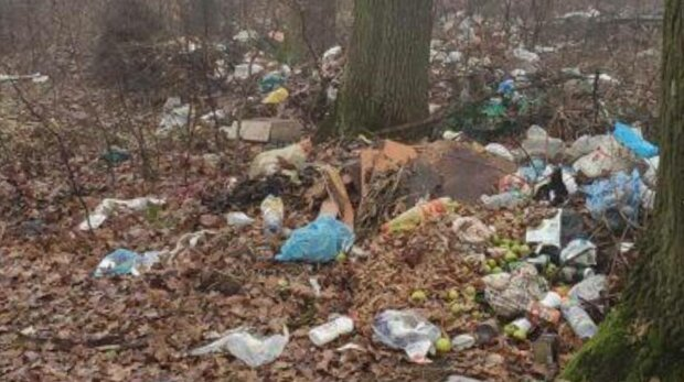 Сміття в лісі під Тернополем, фото: Facebook