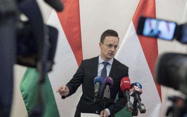 Мовний скандал: Угорщина підклала Україні велику свиню