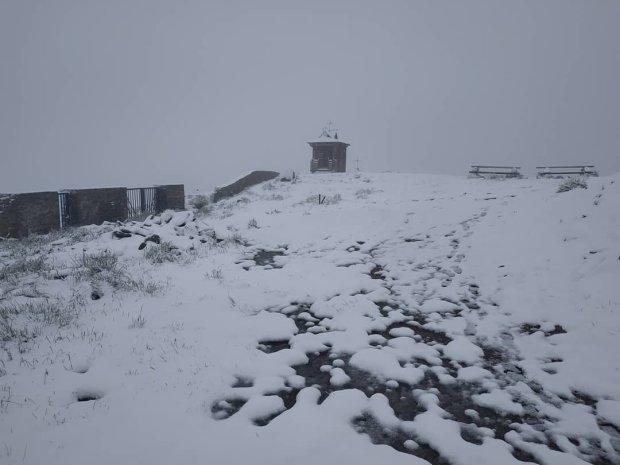 У Карпатах насипало майже півметру снігу