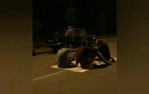 В Запорожье пьяные и смелые устроили пикник посреди дороги - машины подождут
