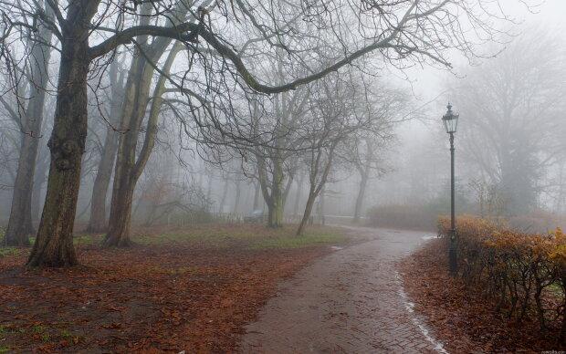 Погода на завтра: синоптик предупредила о туманной опасности