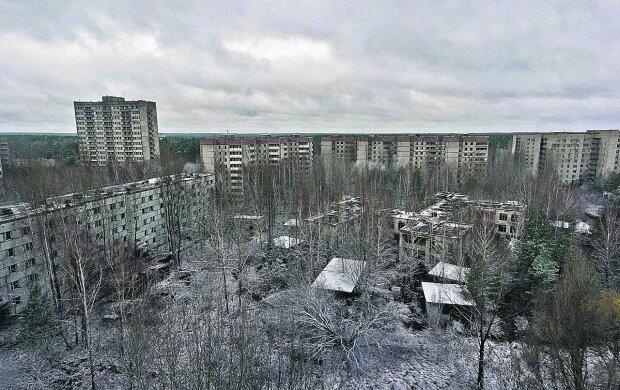 У Чорнобильській зоні випадково виявили повзучого монстра, він тут господар: моторошні кадри