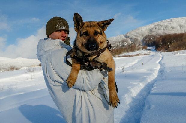 Прикордонник і собака Таллі, фото ДПСУ