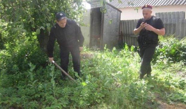 Київські копи накрили богемну наркоплантацію