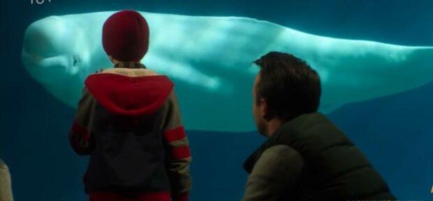 Отец с сыном, фото: скриншот из видео