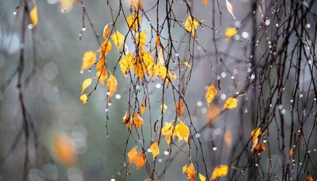 Какой праздник 24 ноября: что обязательно нужно сделать в этот день