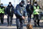 Головне за день вівторка, 7 квітня: діти в гірших умовах, ніж собаки та хто заробляє на паніці українців