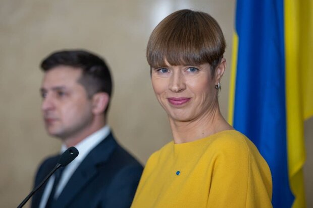 Президент Естонії і Зеленський. Фото: Фонтанка.ги