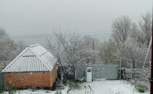 Київщину засипало снігом, фото: Главком