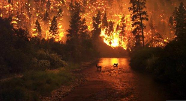 Продовження сибірської трагедії: на популярному курорті спалахнули ліси, рятувальники безсилі