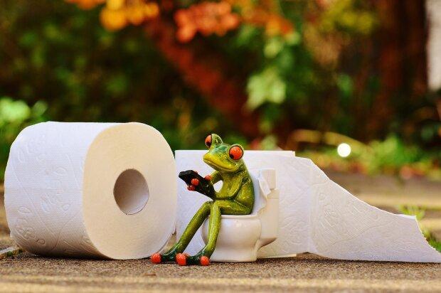 Туалетная бумага или биде: привычки западной цивилизации, которые вредят здоровью