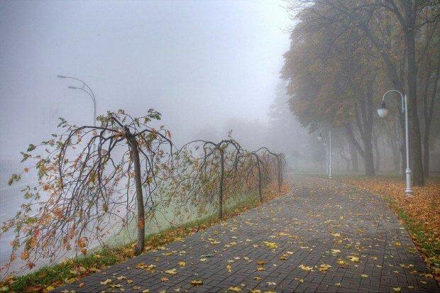 Погода в Киеве на 15 ноября: синоптики обещают хмурую пятницу