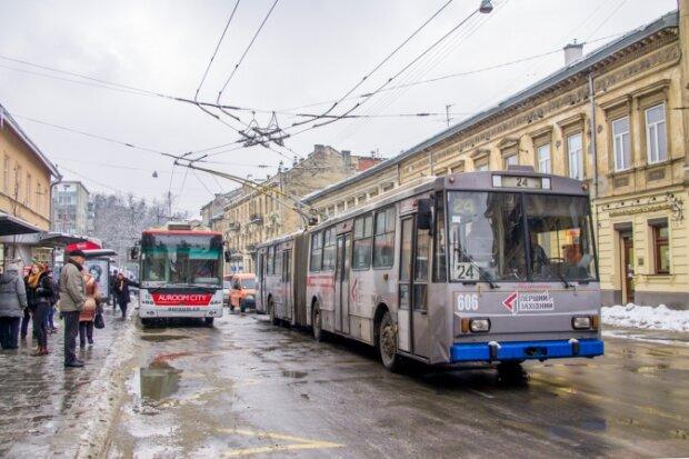 Никто никуда не едет: во Львове резко остановились троллейбусы, что происходит