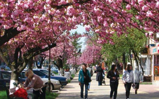 Погода на май: в Украину летит буря