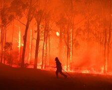 Пожары в Австралии, фото: The Guardian