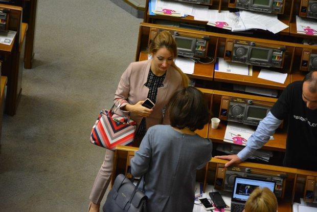Десять минималок или ваш отпуск в Египте: сколько стоят сумки женщин-депутатов