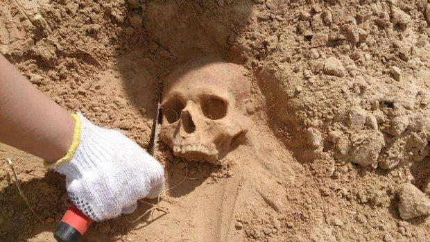 Археологи нашли череп с историей в 35 тысяч лет