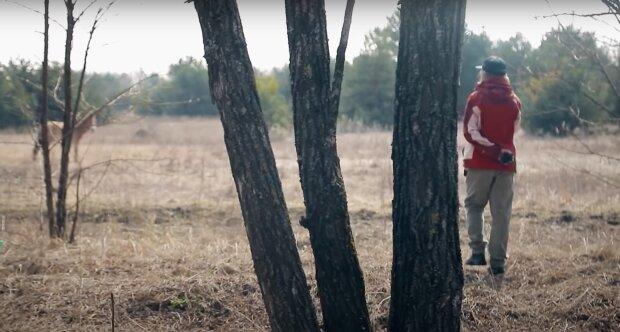 Чорнобиль, фото: скріншот з відео
