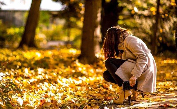 Осень, фото: pxhere