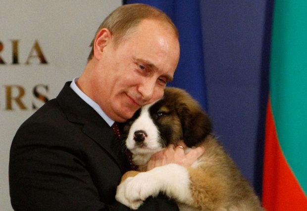 Путин переключился с мальчиков на животных: уже тревожно