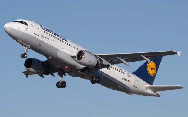 Появилось видео из салона спасенного украинцем самолета