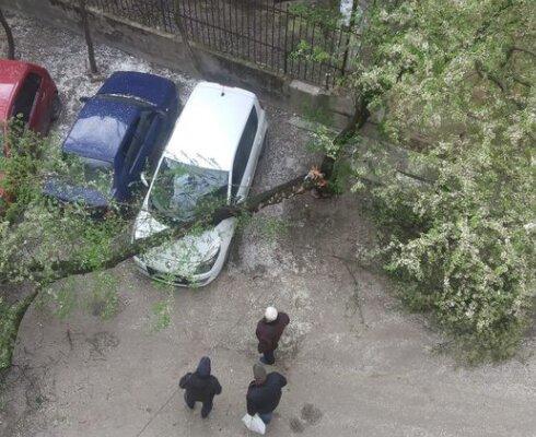 НП у Львові, скріншот Facebook
