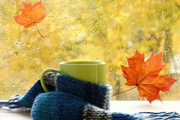 Вінничани, одягайте шапки: синоптики озвучили морозний прогноз на 7 жовтня