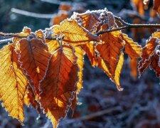 Погода в Запоріжжі на 23 листопада, фото: Соцпортал