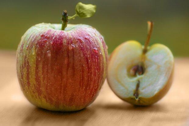 Найкращі листівки із Яблучним Спасом, фото - Рexels