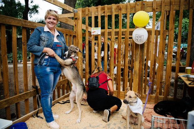 Выбери своего Рекса: одесситов приглашают на фестиваль беспризорных животных