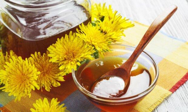 Смачні кульбаби: як приготувати варення і настоянку з сонячної квітки