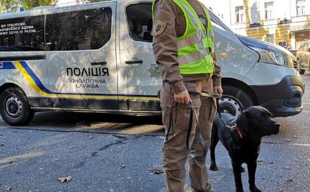 Автомобиль кинолоической службы, фото иллюстративное: Facebook Полиция Киева