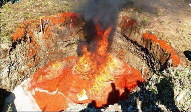 На Камчатці знищили більше чотирьох тонн свіжої червоної ікри