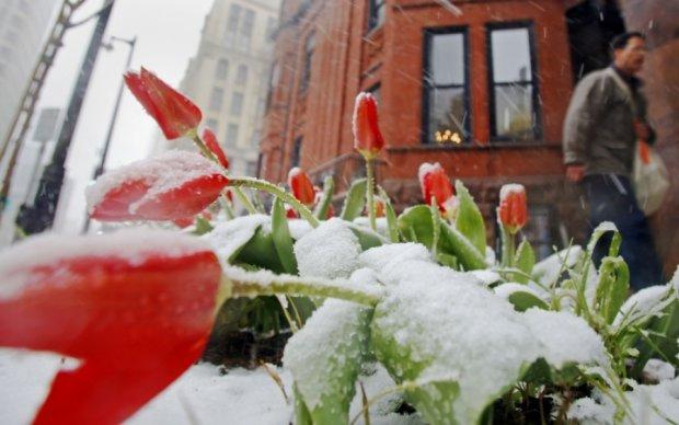 Синоптики попередили українців про нічні заморозки