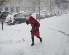 Снегопад в Украине, фото: REUTERS