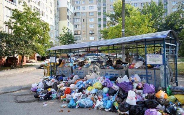 Катастрофа отменяется: Львов почти полностью освободили от мусора