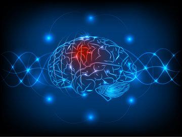 MIR-137: знайдено ген, що провокує шизофренію і аутизм