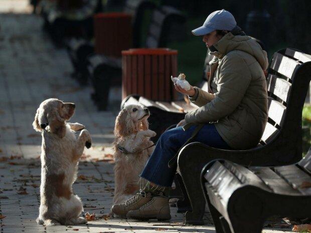 Главные новости за 29 января: пока депутаты воюют с книгами, украинцы массово сводят счеты с жизнью