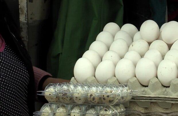 Ціни на курячі яйця, кадр з відео