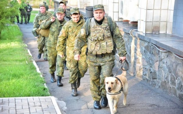 В Мариуполе устроили облаву на пособников боевиков