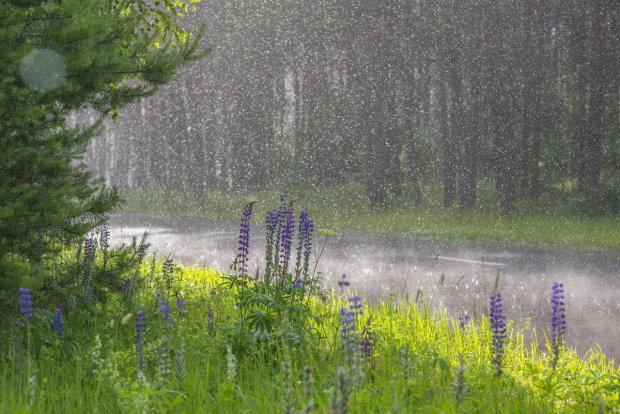 Погода на 31 июля: зальет почти всю Украину