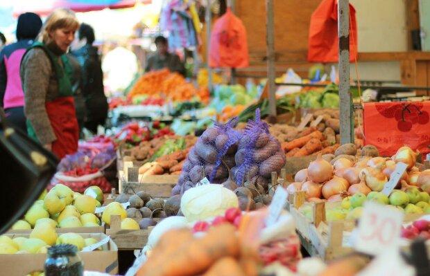 """Вместо красной икры: днепрян накормят """"золотой картошкой"""", - цены за пределами здравого смысла"""