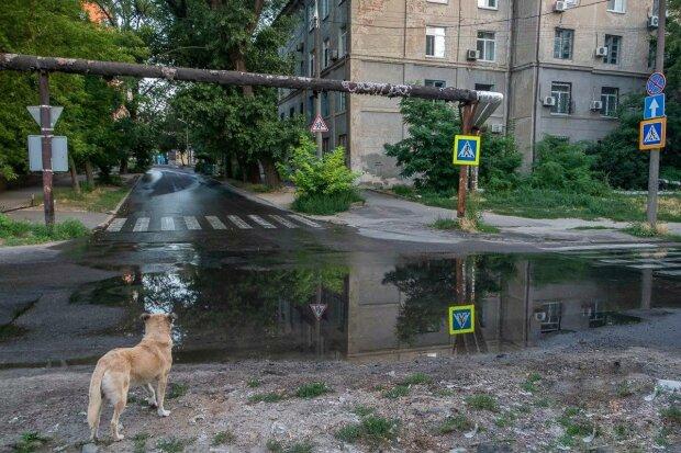 """Улица Днепра превратилась в озеро с фонтаном, коммунальщики не спешат – само """"пройдет"""""""