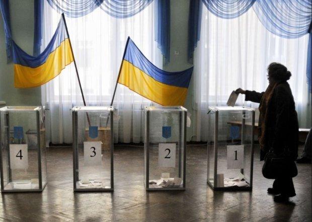 """""""Зуб алігатора на шию і бюлетень"""": блогер вигадав рецепт чесних виборів в Україні"""