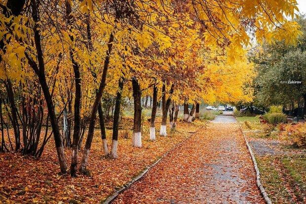 Погода 17 листопада: хмари і сонце зіграють у піжмурки над Івано-Франківськом