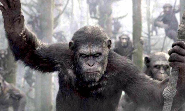 """Опублікований новий трейлер фільму """"Планета мавп: Війна"""""""