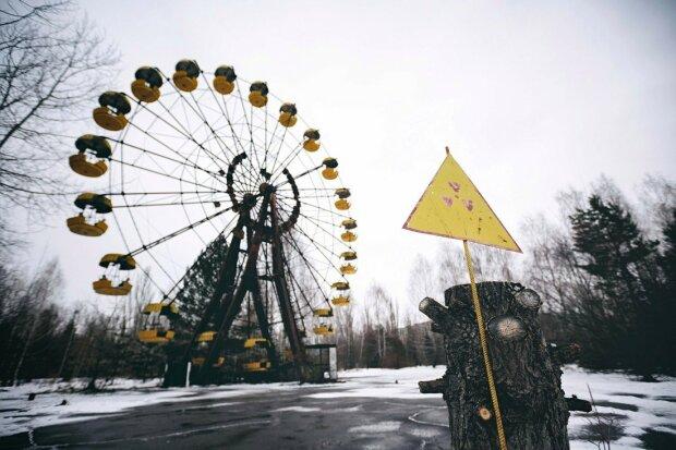 """Чорнобиль ожив посеред зими, диво """"мертвої зони"""" показали одним фото"""